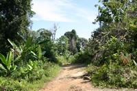 En piste pour Derawan
