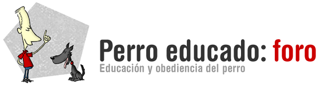 Perroeducado.com