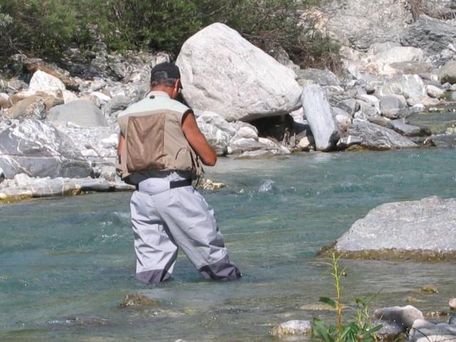 http://i15.servimg.com/u/f15/11/65/53/24/img_6115.jpg