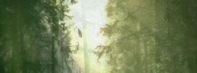 Le royaume des Elfes