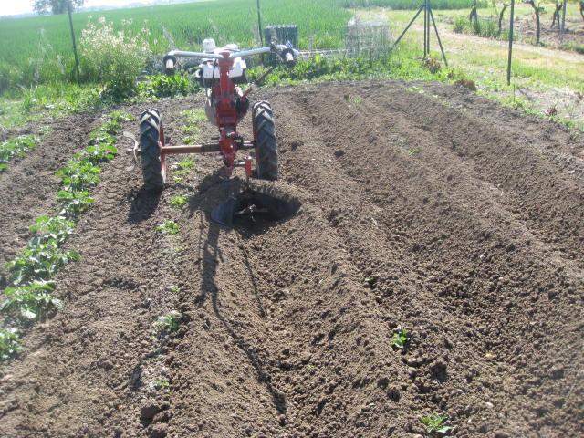 Commentaires sur le combi motostandard terra page 4 - Date plantation pomme de terre ...