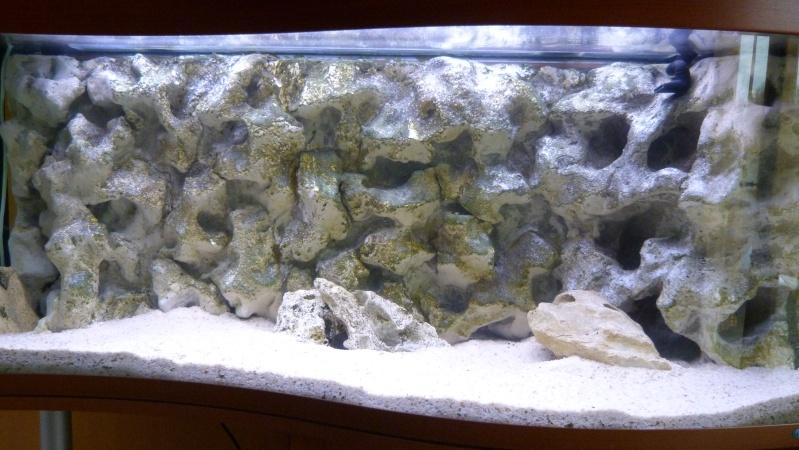 Mon 220 litres pour cichlid s cr ation d 39 aquarium eau for Decoration pour aquarium d eau douce
