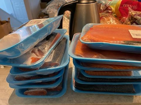 salmon10.jpg
